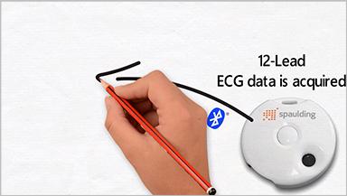 Spaulding Electrocardiograph 2100iQ